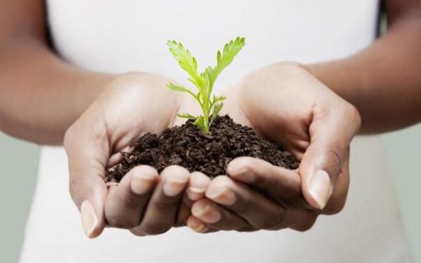 Оказывая поддержку субъектам малого предпринимательства, государство рассчитывает на всестороннее развитие экономики.