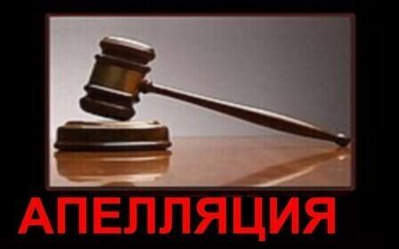 Образец апелляционной жалобы на решение районного суда – как подать?