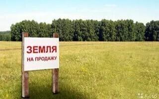 Арест на земельный участок. Процедура продажи с торгов земельного участка.