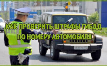 штрафы гибдд по номеру автомобиля и птс