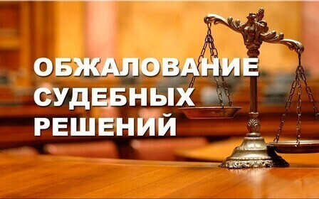Обжалование решения суда апелляционной инстанции