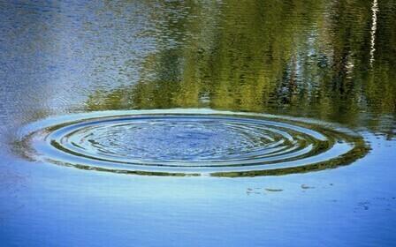 Аренда водных объектов