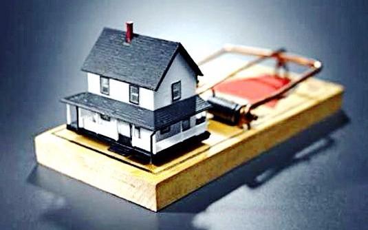 дом в мышеловке