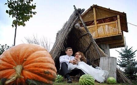 тыква, арбузы, шалаш и супружеская пара