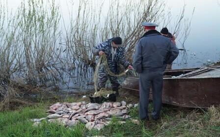 Наказание за ловлю сетями