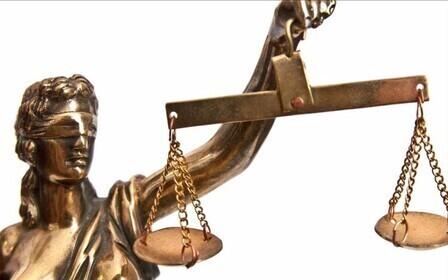 адвокат по правам человека