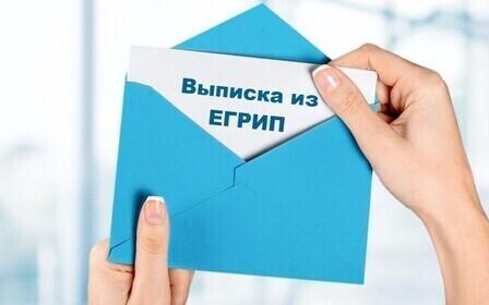 Выписка из ЕГРИП – что это за документ, кому и для чего она выдается