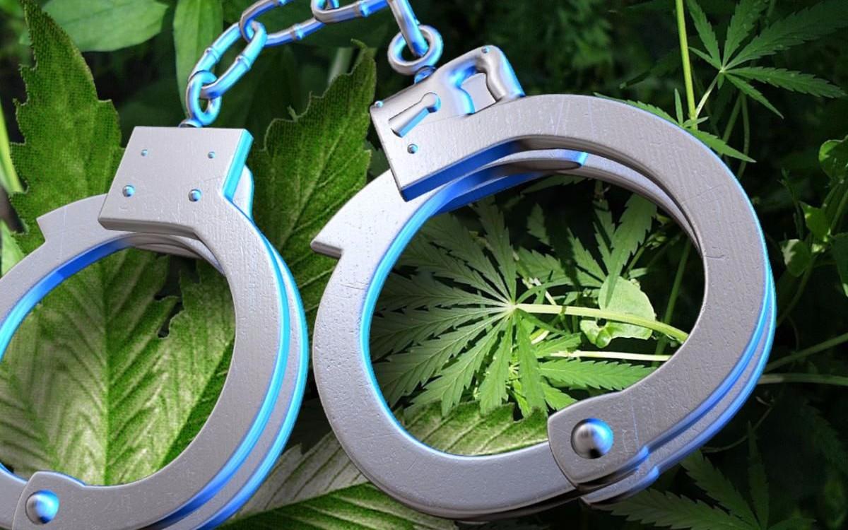 Статья 228 часть 2. Ответственность за оборот наркотиков и психотропных веществ.