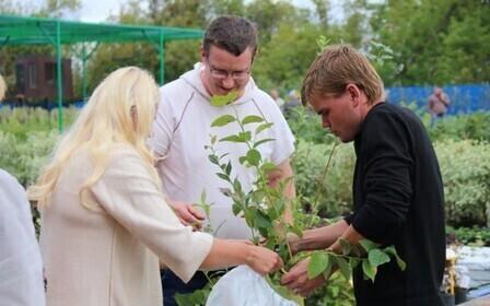 Управление садоводческими и дачными некоммерческими объединениями