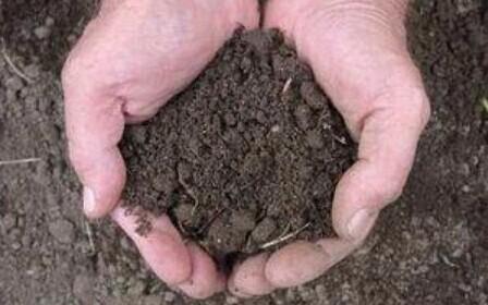 Дарение земельного надела