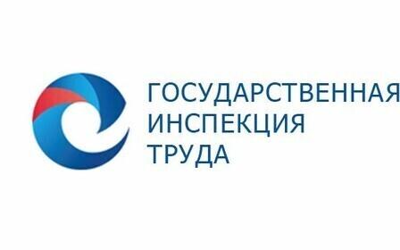 Для чего нужна трудовая инспекция Московской области?