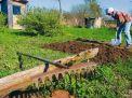 Законопроект о садоводстве огородничестве и дачном хозяйстве
